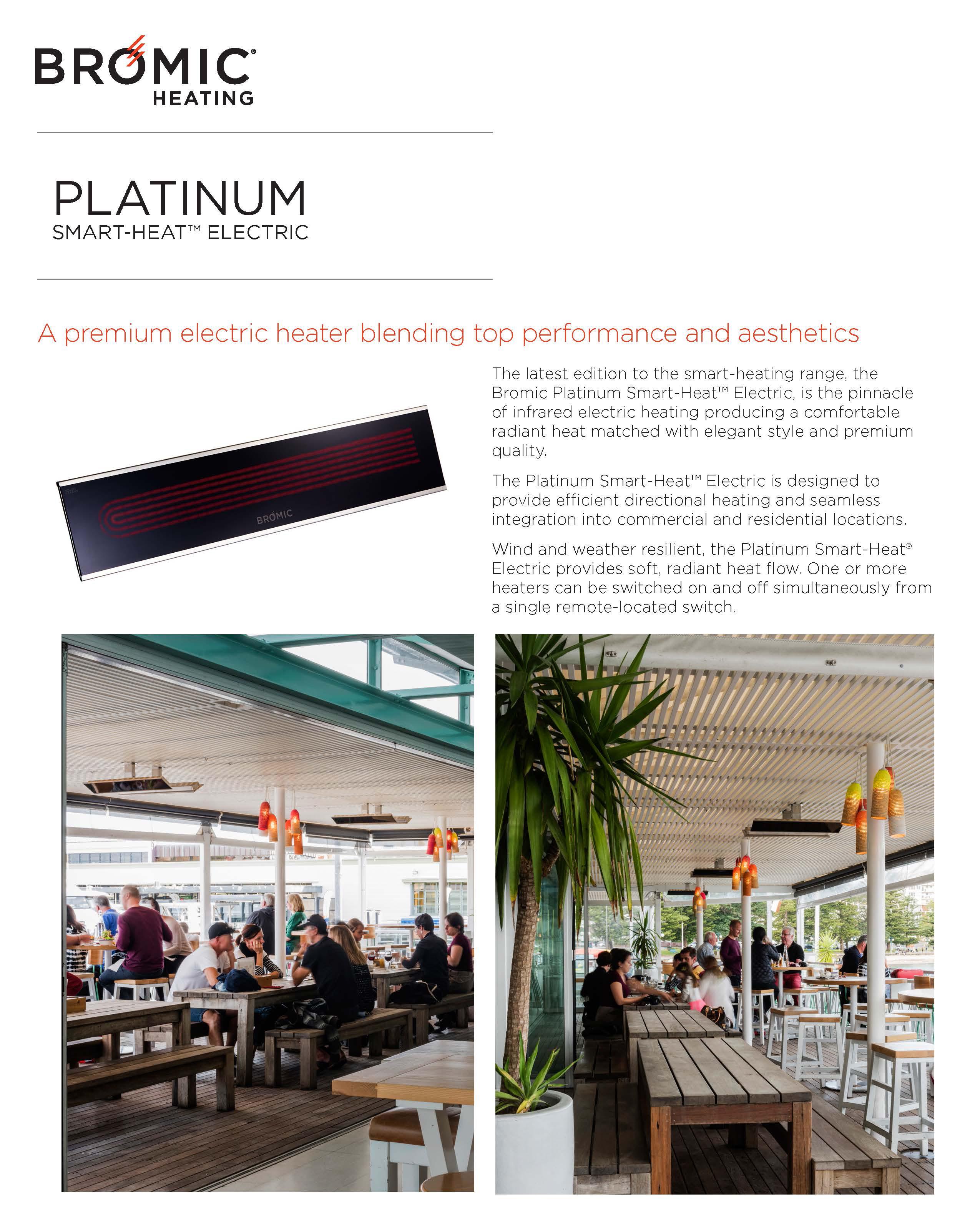 platinum-electric-s2-page-1.jpg